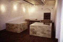 017-museo-bellas-artes-la-p